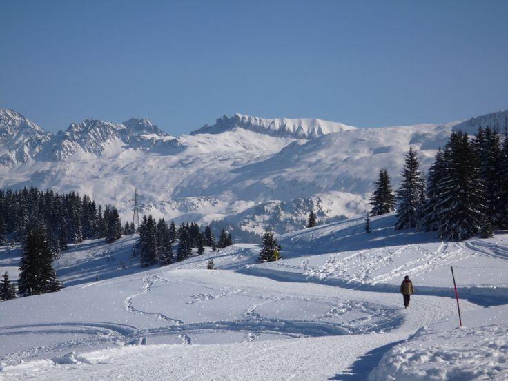 Paysage enchanteur des Alpes.