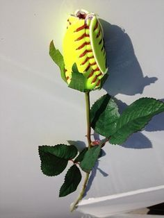 Longstem Fastpitch Softball Rose... If you ever got me one of these, I would love you forever <3