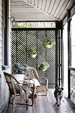 25 best ideas about lattice wall on pinterest backyard for Hanging patio privacy screen