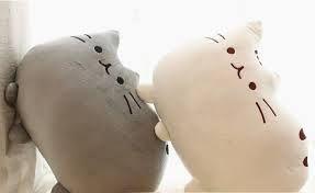 Resultado de imagen para kawai cat