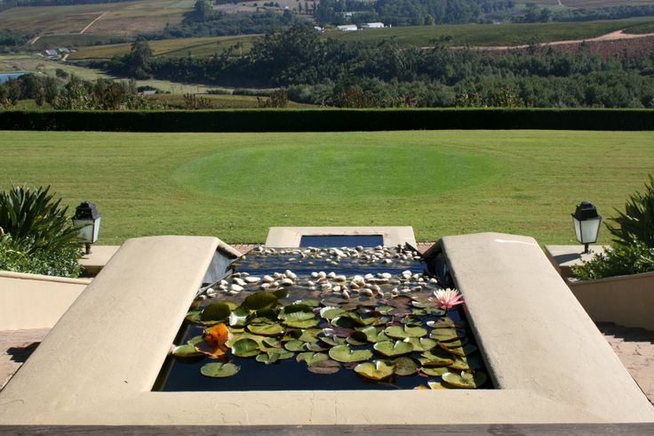 Majestic views from Ernie Els wines