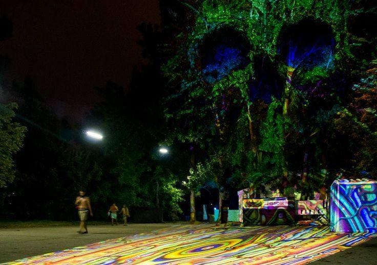 Fák, bokrok - fényfürdő - Night Projection fényfestés  Akvárium Klub Official - Night Projection fényfestés  További fotók: https://www.facebook.com/media/set/?set=a.870855719592774.1073741894.216863264992026&type=3  #Akvárium #NightProjection #fényfestés #raypainting #visuals