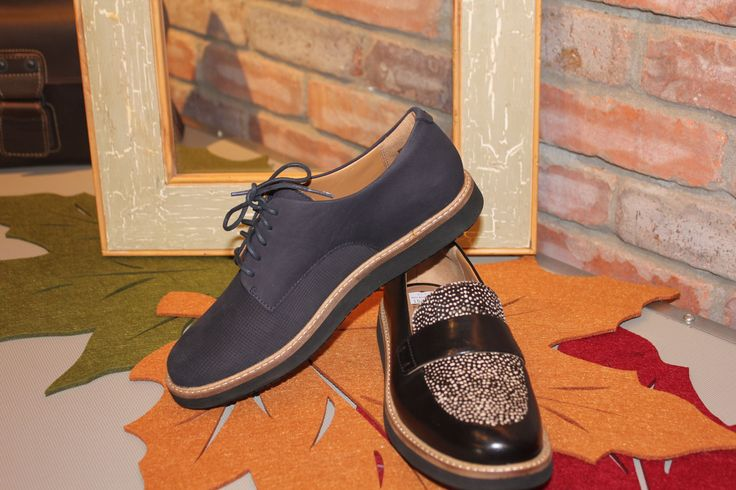 Clarks shoes. These look amazing with leggings or jeans.