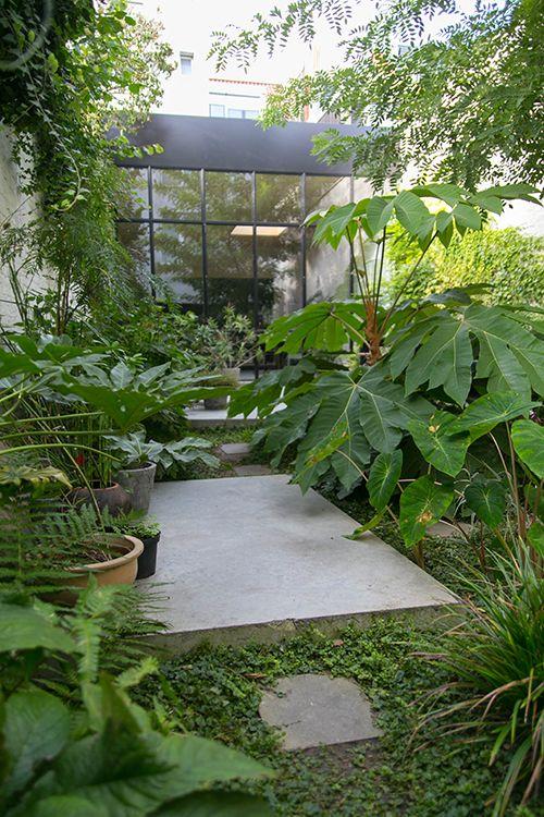 jungle design garden