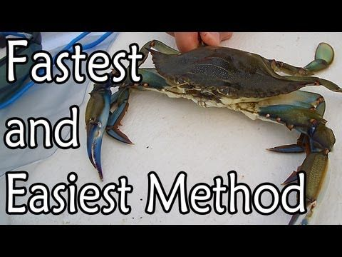 how to cook crab legs show in the vidio
