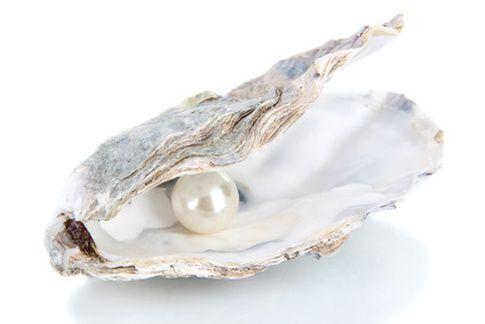 Jeder Mensch ist wie eine Auster. Unter einer harten Schale steckt eine wunderschöne Perle.