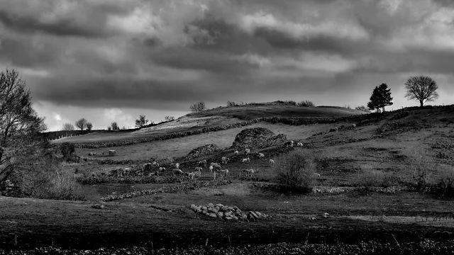Black & white landscapes. - Google+