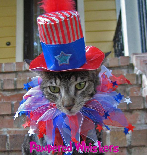 Uncle Sam cat hat and party collar for cats by PamperedWhiskers, $16.99