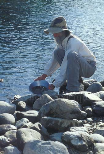 gold panning along the South Fork American River
