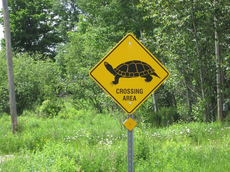 Only in Haliburton you say:)