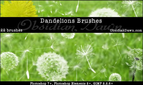 Obsidian Dawn is a multi-talented designer with Photoshop brushes, patterns, shapes, vectors, and tutorials available for free download. Both personal and commercial use allowed with credit or with a licence.