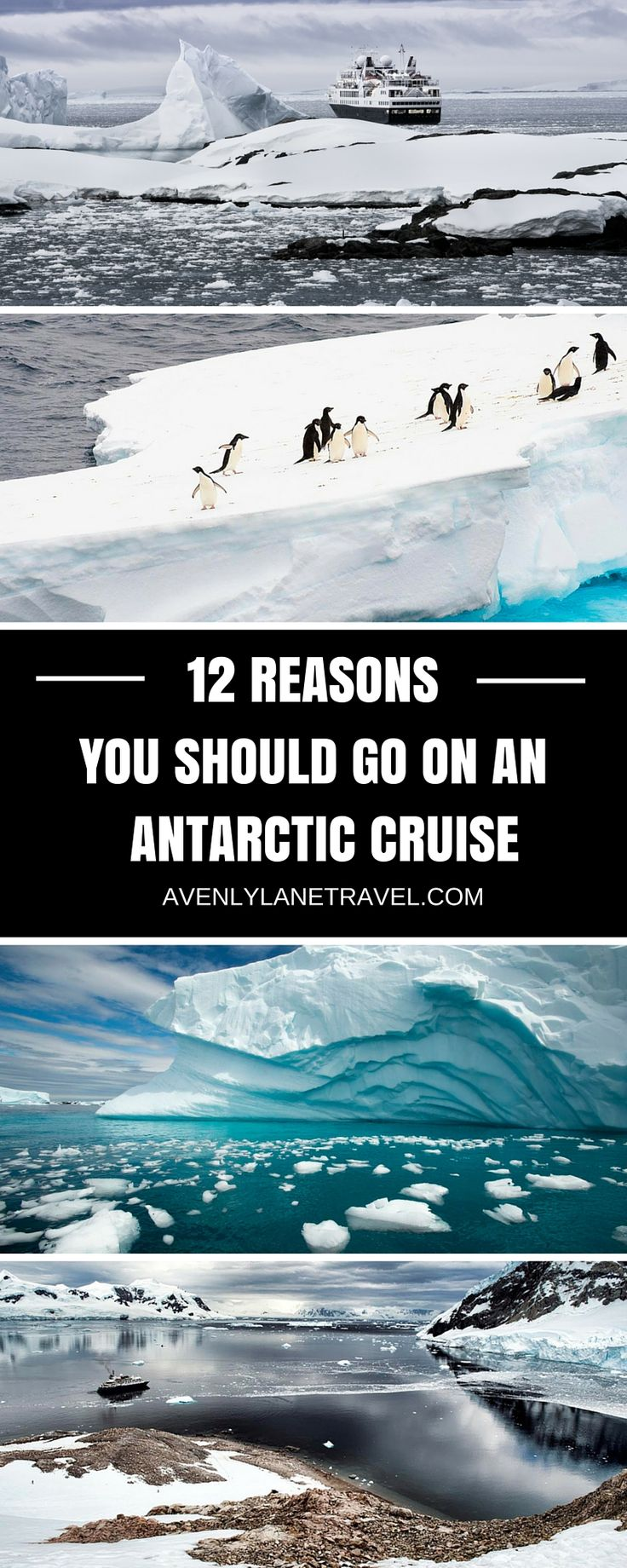 Read 12 reasons wy an Antarctic cruise should be at the TOP of your bucket list!  These photos will blow your mind!  Click through to read more.