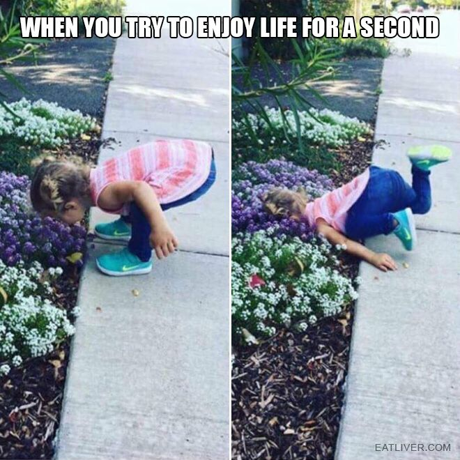 When You Try To Enjoy Life For A Second Really Funny Memes Fresh Memes Funny Relatable Memes