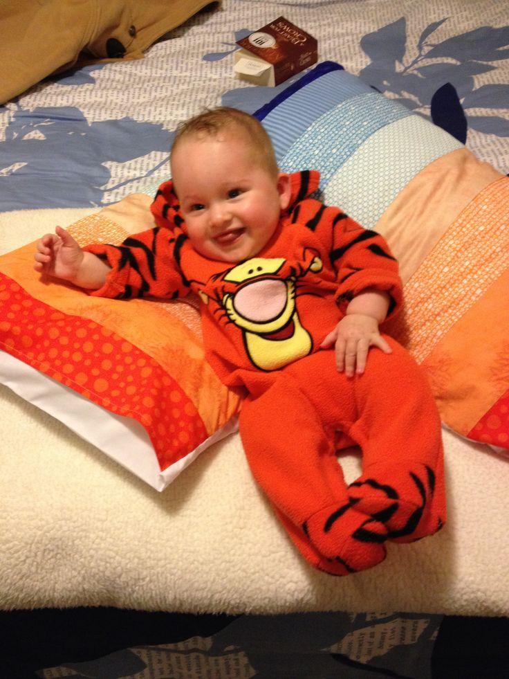 Tigeriffic pillows