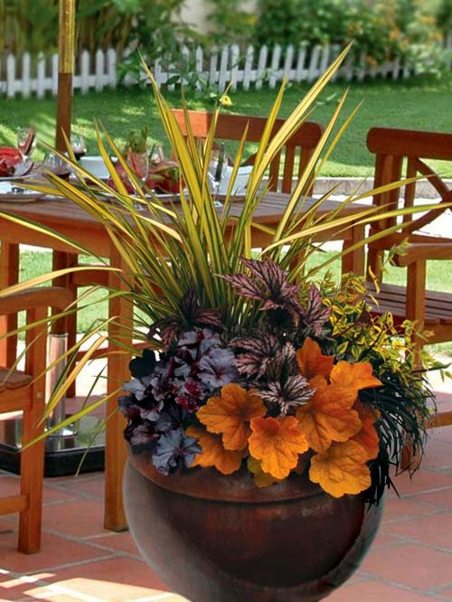 Terra Nova Nurseries - Professional Growers - Container Recipes  pretty for a fall wedding