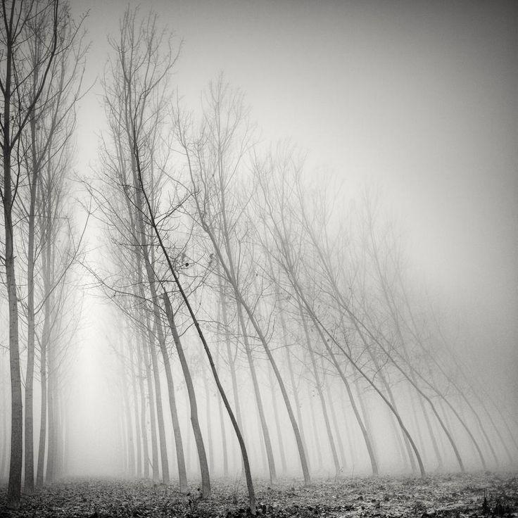 Picture Fabric: Der Tessiner Fotograf Pierre Pellegrini fängt mit seinen Langzeitbelichtungen Naturphänomene und Landschaften ein, in denen Realität und Imagina …