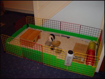 208 best guinea pig cage ideas images on pinterest