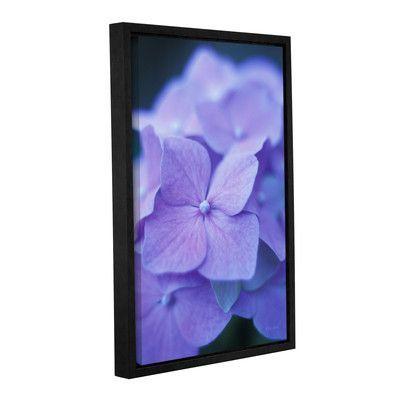 "ArtWall Blue Hydrangeas by Kathy Yates Framed Photographic Print Size: 36"" H x 24"" W"