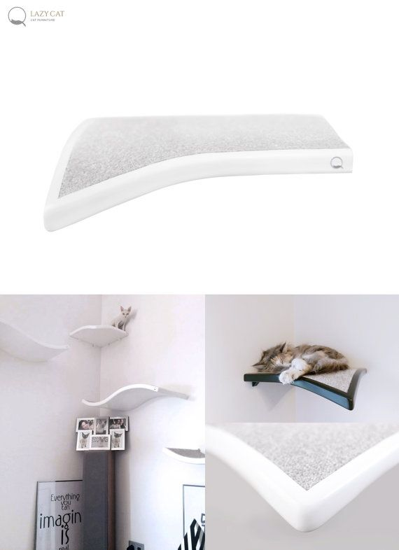 Hoek plat blad kat perch kat planken huisdier ontwerp