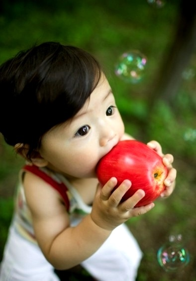 25 Best Eating Apples  Images By Erin Oconnor On -7315