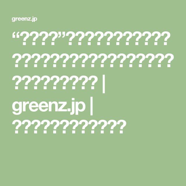"""""""あるもの""""をアップサイクルしたら、リゾートにピッタリの極上ハンモックができちゃった!   greenz.jp   ほしい未来は、つくろう。"""