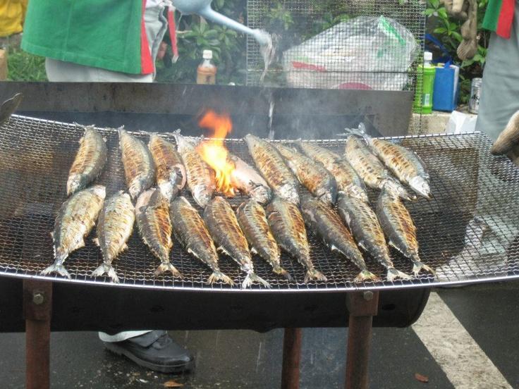 秋刀魚(サンマ) Pacific saury