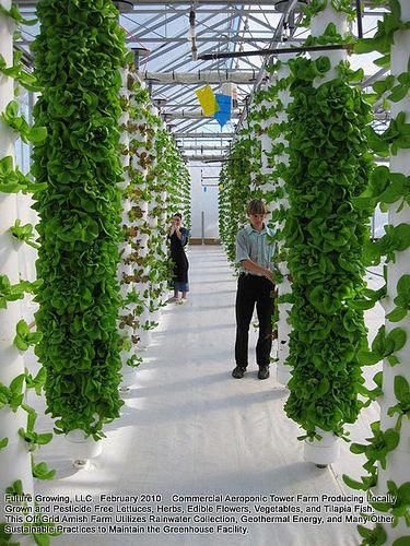 Vertical Towers Tower By Future Growing Visionplants Flickr Towergarden