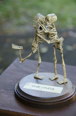 Through My Looking Glass - Christy Buonomo Photography: Halloween Trophies