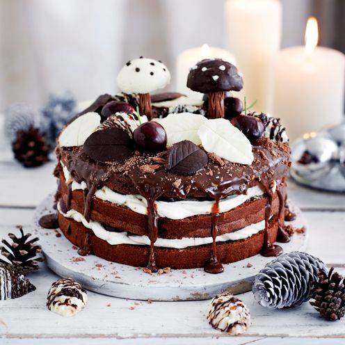 34 best christmas cake recipes images on pinterest christmas cakes christmas layer cake recipes your step by step guide forumfinder Images