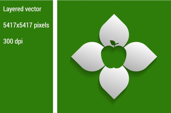 Apple diagram ~ Illustrations on Creative Market