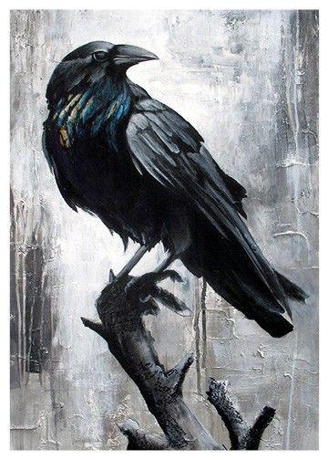 Crow bird tattoos