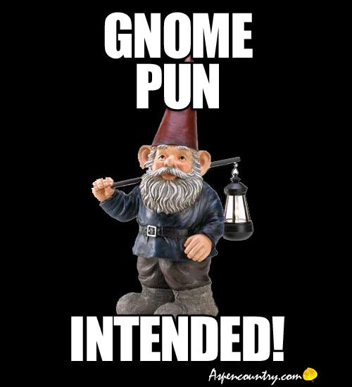 "Funny Gnome Meme: ""Gnome Pun Intended!"" https://www.jollylane.com/greenhouse/"
