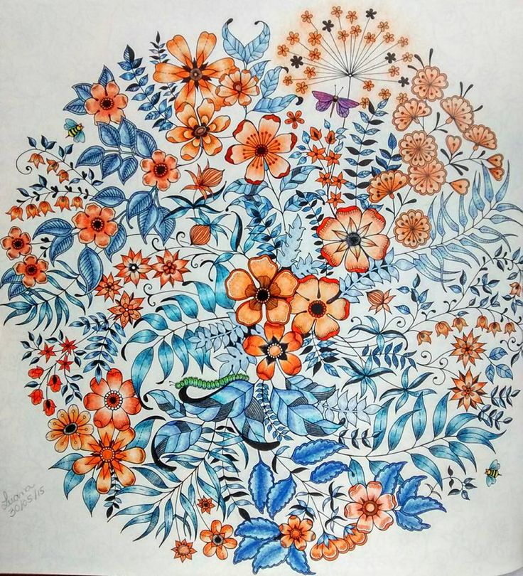SECRET GARDEN Absolutely Love This All The Little Details Hidden Amongst Adult ColoringColoring BooksColoring