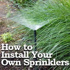 Pretty Handy Girl does it again. This time with a tutorial for installing your own sprinklers.
