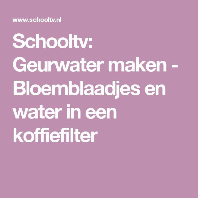 Schooltv: Geurwater maken - Bloemblaadjes en water in een koffiefilter