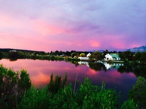 Ken Forrester Vineyards, Stellenbosch