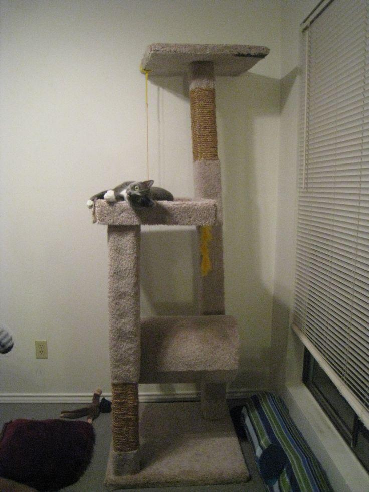 build a cat climber - Cat Climber