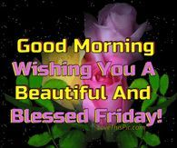 Good Morning Wishing You A Beautiful And Blessed Friday