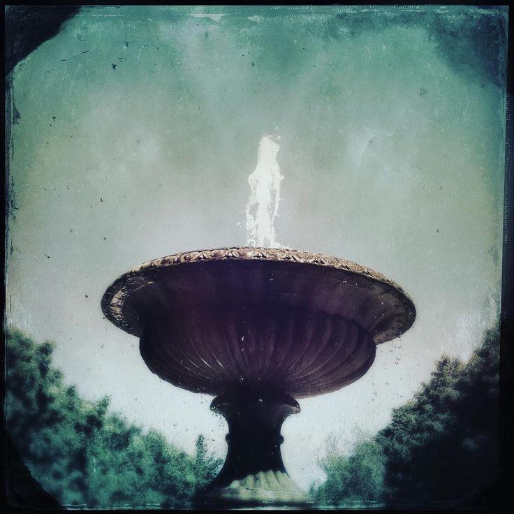 #regentspark #fountain#splash#meander #whereflowersdream #london #heatwave #gentle#
