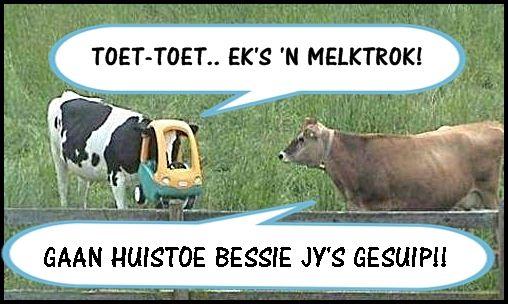 Bessie............