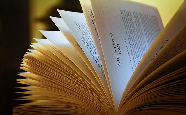 À chaque édition, des centaines de nouveaux termes intègrent les célèbres dictionnaires du Petit Robert et du Petit Larousse illustrés. Les néologi...