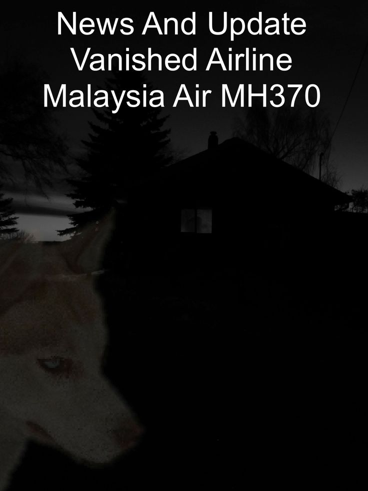 Malaysia Airlines flight MH370 and its 239 passengers vanished from radar while en route to Beijing from Kuala Lumpur. Help us tag and find the missing airplane. Join Global Find (click on link below) and be a part of this extreme search mission for a vanished airplane. https://sites.google.com/site/onedaywithdiabetes/global-find/flight-mh370