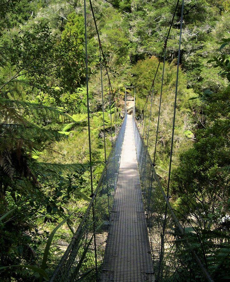 The Abel Tasman Coast Path Swingbridge