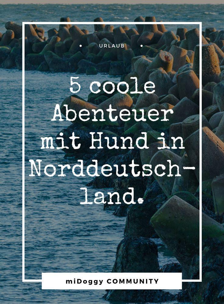 Abenteuer Norddeutschland – 5 coole Abenteuer mit Hund