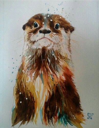 Gorgeous otter!