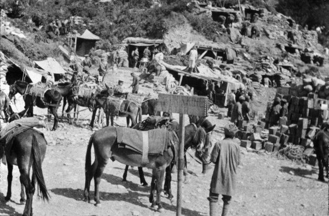 View of the turbaned Indian soldiers with mules and piles of stores. In the background   can be seen the lower part of a hillside on which are the entrances to dugout shelters.   Photographed by an unknown photographer in 1915. Dugouts of the Indian Mule Transport   Coy, Gallipoli, Turkey. Martin, W W :World War One albums of Mr Laurie C Mackie. Ref:   PA1-o-309-40-1. Alexander Turnbull Library, Wellington, New Zealand.   http://natlib.govt.nz/records/22886996