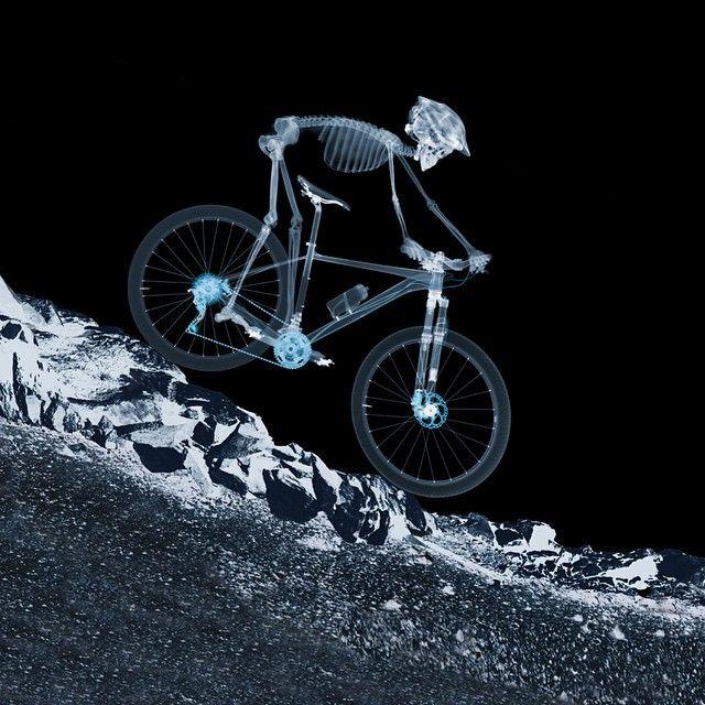 For more great pics, follow bikeengines.com #bicycle #bike #skeleton #xray #bones