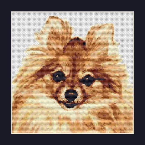 Pomeranian Dog Counted Cross Stitch Pattern by InstantCrossStitch