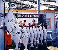 Homer alaska fishing, Homer alaska halibut fishing charters, halibut derby, halibut fishing, half-day halibut charters, alaska halibut fishing, half-day halibut fishing charters. halibut, alaska fishing charters
