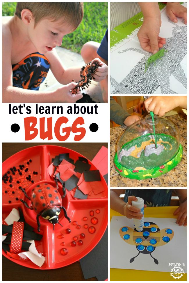 10 Kids Apps About Bugs - Fun and Educational - iGameMom